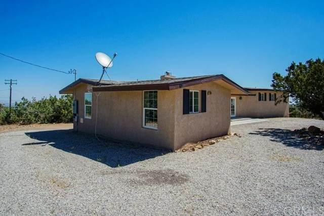 2780 Silver Ridge Drive, Pinon Hills, CA 92372 (#CV20133419) :: A|G Amaya Group Real Estate