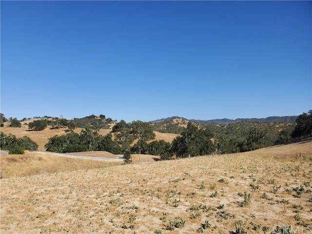 3640 Delaney Place, Paso Robles, CA 93446 (#NS20134039) :: Wendy Rich-Soto and Associates