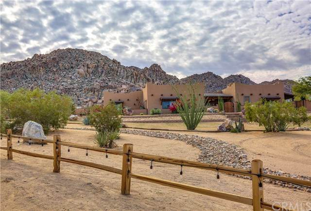 6934 White Feather Road, Joshua Tree, CA 92252 (#JT20134504) :: The Laffins Real Estate Team