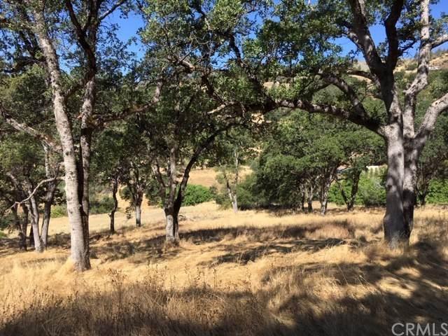 0 Via Las Lupes, Yankee Hill, CA 95966 (#SN20131794) :: eXp Realty of California Inc.