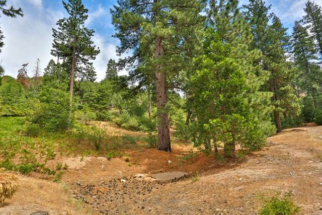 535 Coulter Drive, Lake Arrowhead, CA 92352 (#526061) :: The Laffins Real Estate Team