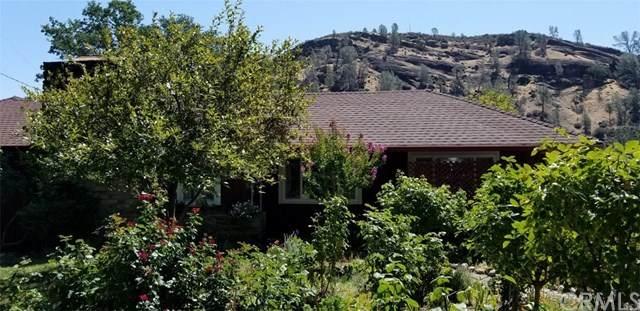 1 Colbert Street, Elk Creek, CA 95939 (#SN20134853) :: Allison James Estates and Homes