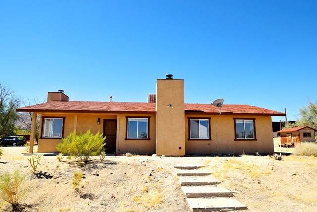 65883 Cactus Drive, Joshua Tree, CA 92252 (#JT20135013) :: Allison James Estates and Homes