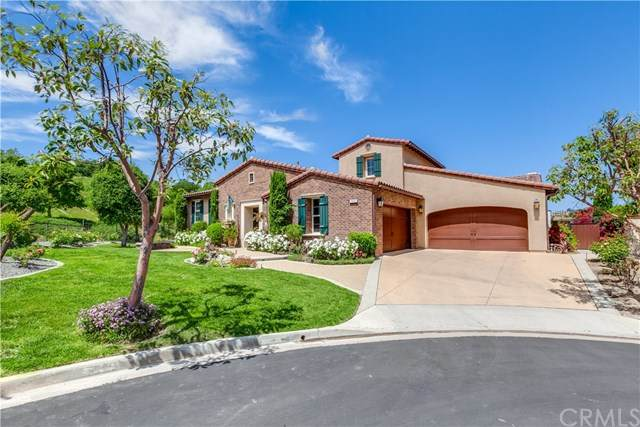 2980 Aviano Court, Chino Hills, CA 91709 (#TR20135073) :: Sperry Residential Group