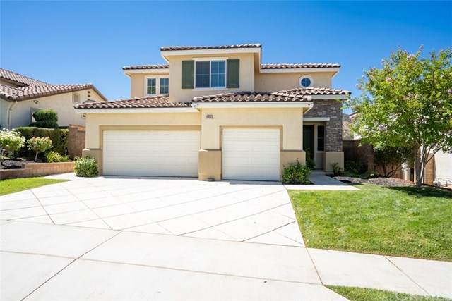 34061 Corktree Road, Lake Elsinore, CA 92532 (#NP20135009) :: Allison James Estates and Homes