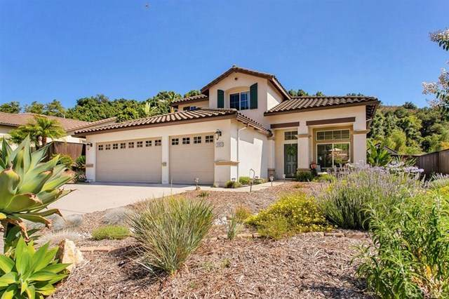 3151 Willow Tree Ln, Escondido, CA 92027 (#200032010) :: Sperry Residential Group
