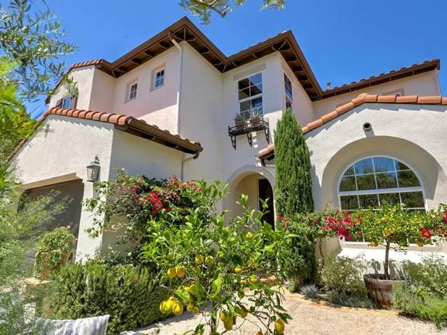 1915 Colina Salida Del Sol, San Clemente, CA 92673 (#OC20129029) :: Doherty Real Estate Group
