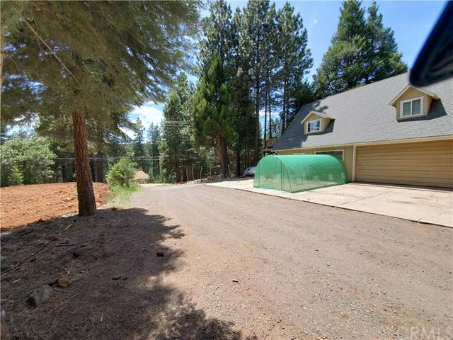 331 Peninsula Drive, Lake Almanor, CA 96137 (#PA20131163) :: Sperry Residential Group