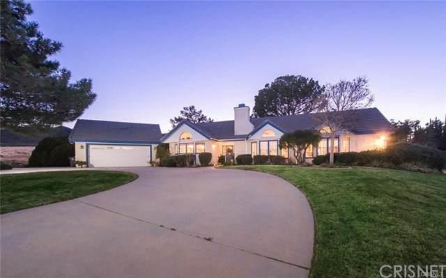 41521 62nd Street W, Palmdale, CA 93551 (#SR20098117) :: Zember Realty Group