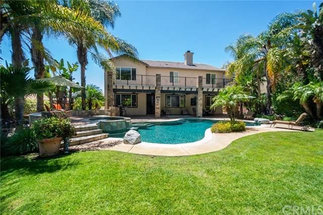 38956 Cherry Point Lane, Murrieta, CA 92563 (#SW20135630) :: Better Homes and Gardens Real Estate Vogler Feigen