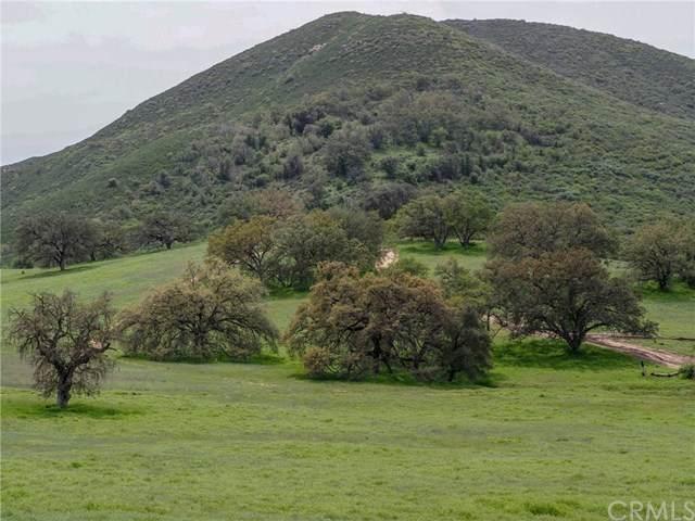 0 Mesa Grande Road, Santa Ysabel, CA 92070 (#ND20133629) :: Go Gabby