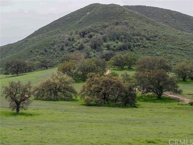 0 Mesa Grande Road - Photo 1