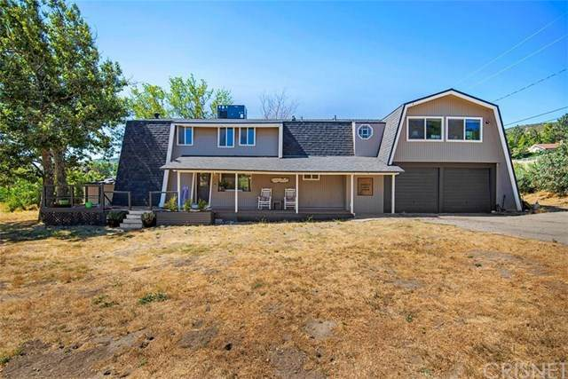 10062 Leona Avenue, Leona Valley, CA 93551 (#SR20135899) :: Sperry Residential Group