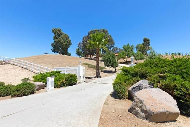41740 Via Del Monte, Temecula, CA 92592 (#SW20129041) :: Allison James Estates and Homes