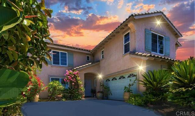 10415 Valley Waters Dr, Spring Valley, CA 91978 (#200032202) :: Steele Canyon Realty