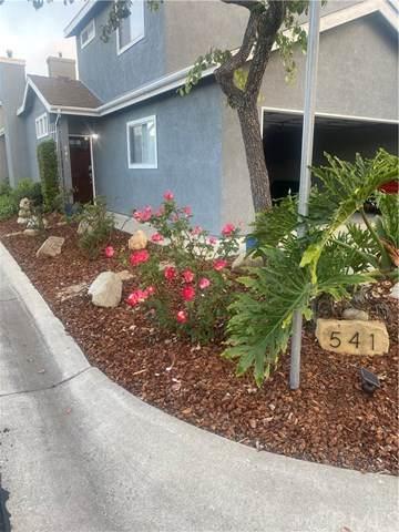 541 Macaw Court, Nipomo, CA 93444 (#SP20136038) :: Allison James Estates and Homes