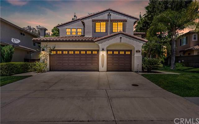 32466 Campo Drive, Temecula, CA 92592 (#SW20136050) :: Allison James Estates and Homes
