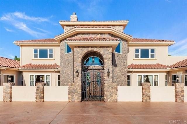 413 Bonita Valle, Fallbrook, CA 92028 (#200032331) :: Re/Max Top Producers