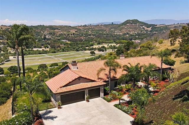 30030 Via Maria Elena, Bonsall, CA 92003 (#200032448) :: Steele Canyon Realty