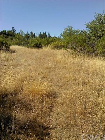 0 Concow, Concow, CA 95965 (MLS #PA20137004) :: Desert Area Homes For Sale