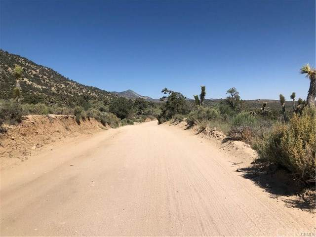 0 Burns Canyon Road, Pioneertown, CA 92286 (MLS #JT20137006) :: Desert Area Homes For Sale