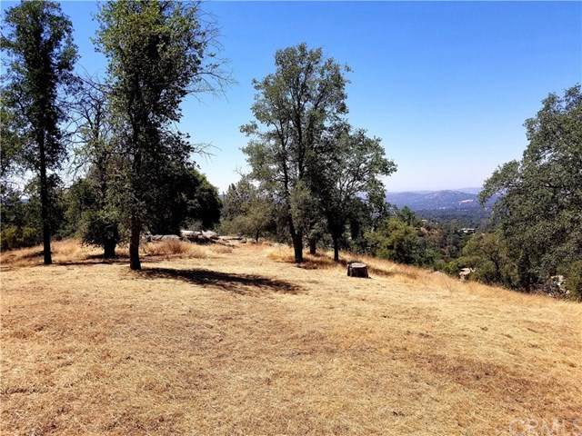 0 Tree Tops Lane, Coarsegold, CA 93614 (#FR20137076) :: Compass