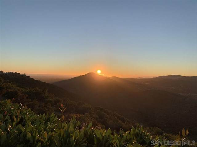 18368 Via Ambiente, Rancho Santa Fe, CA 92067 (#200032547) :: Steele Canyon Realty
