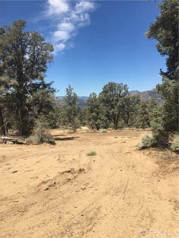 41 The Other Road, Unincorporated, CA 93527 (#CV20137298) :: Steele Canyon Realty