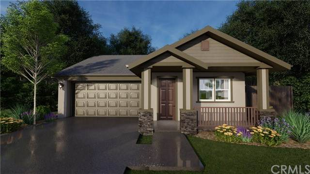 3416 Rogue River Drive, Chico, CA 95973 (#SN20137385) :: The Laffins Real Estate Team