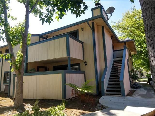 2555 Copa Del Oro Drive, Union City, CA 94587 (#ML81800790) :: The Laffins Real Estate Team