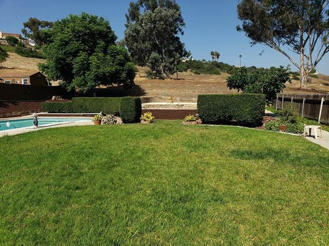 4152 Corral Canyon Rd, Bonita, CA 91902 (#200032582) :: American Real Estate List & Sell