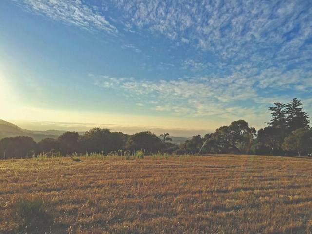 8350 Monterra Views  (Lot 152), Monterey, CA 93940 (#ML81800808) :: American Real Estate List & Sell