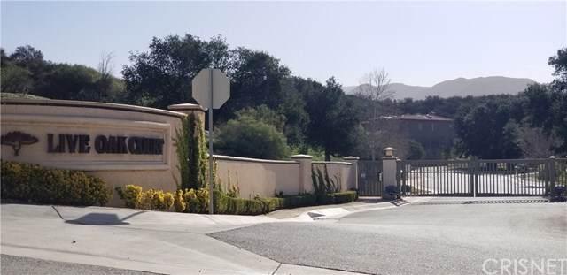 10 Live Oak Circle, Canyon Country, CA 91387 (#SR20137457) :: Legacy 15 Real Estate Brokers
