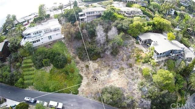 1246 Dunning Drive, Laguna Beach, CA 92651 (#TR20137684) :: Doherty Real Estate Group