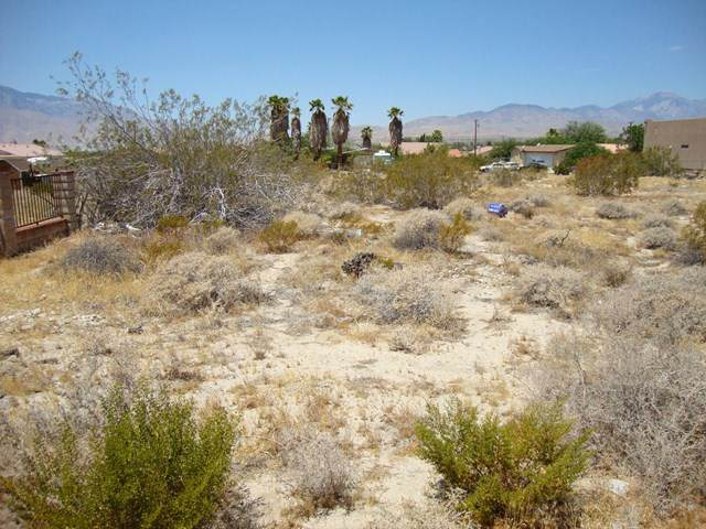 0 Bubbling Wells Road, Desert Hot Springs, CA 92240 (#219045971DA) :: A|G Amaya Group Real Estate