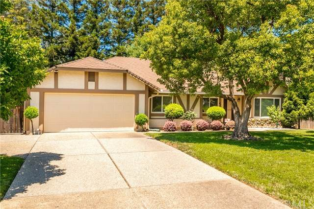 47 Skymountain Circle, Chico, CA 95928 (#SN20134550) :: The Laffins Real Estate Team