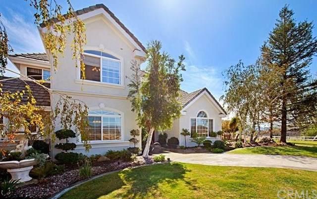 40400 Sierra Maria Road, Murrieta, CA 92562 (#TR20138392) :: Blake Cory Home Selling Team