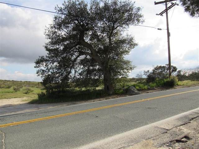 Potrero Valley Rd, Potrero, CA 91963 (#200032778) :: A|G Amaya Group Real Estate