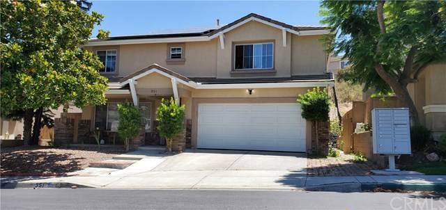 351 La Purisma Way, Oceanside, CA 92057 (#ND20138218) :: Allison James Estates and Homes