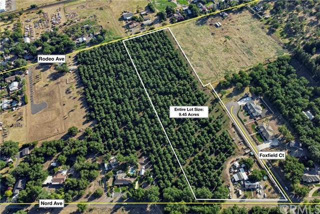 0 Nord Avenue, Chico, CA 95973 (#SN20136090) :: The Laffins Real Estate Team