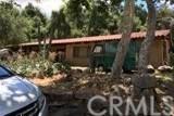 17251 Los Alisos Road, Lake Elsinore, CA 92530 (#SW20138681) :: Crudo & Associates