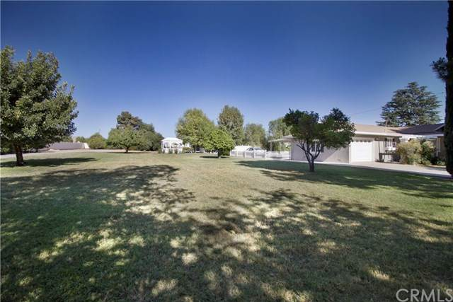 11250 Sunnyslope Avenue, Cherry Valley, CA 92223 (#EV20139043) :: Frank Kenny Real Estate Team