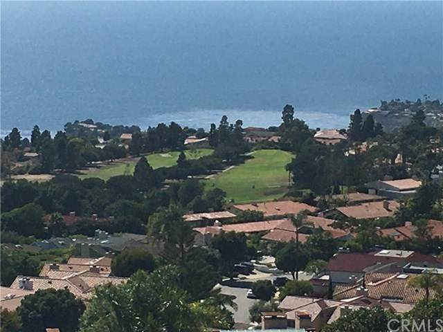 30103 Matisse Drive, Rancho Palos Verdes, CA 90275 (#PV20140295) :: The Miller Group
