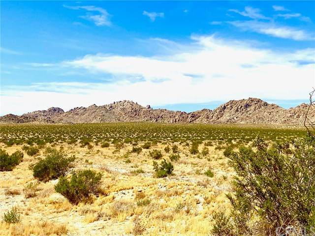 0 End St., Lucerne Valley, CA 92356 (#RS20123718) :: Sperry Residential Group