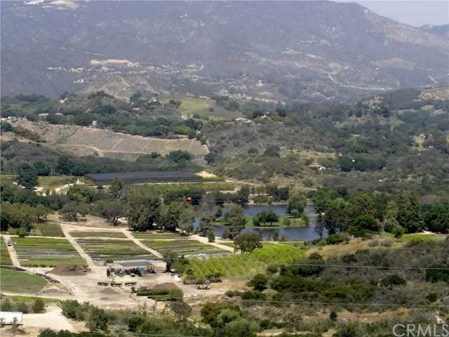 0 De Luz Road, Fallbrook, CA 92528 (#SW20141441) :: Zutila, Inc.