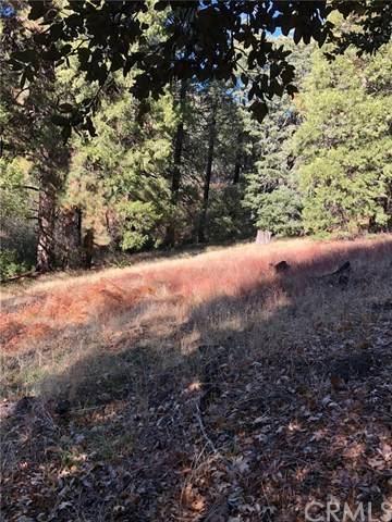 0 Burtnt Mill Canyon Road - Photo 1
