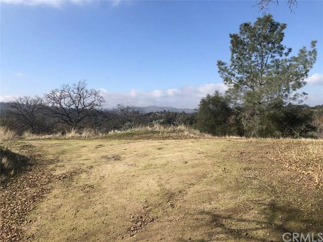 43640-Lot 1894 Ranger Circle Drive, Coarsegold, CA 93614 (#FR20143092) :: Sperry Residential Group