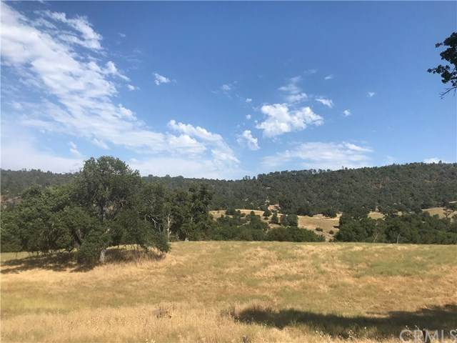 0 Ben Hur Road, Mariposa, CA 95338 (#MP20143075) :: Twiss Realty
