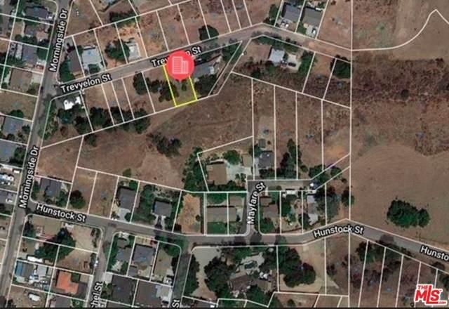 30124 Trevyelon Street, Castaic, CA 91384 (#20606166) :: American Real Estate List & Sell