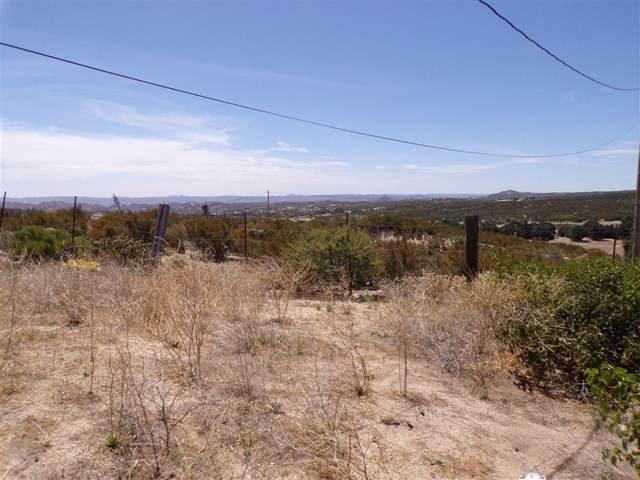 2353 Tierra Heights Road, Boulevard, CA 91905 (#200034139) :: Sperry Residential Group